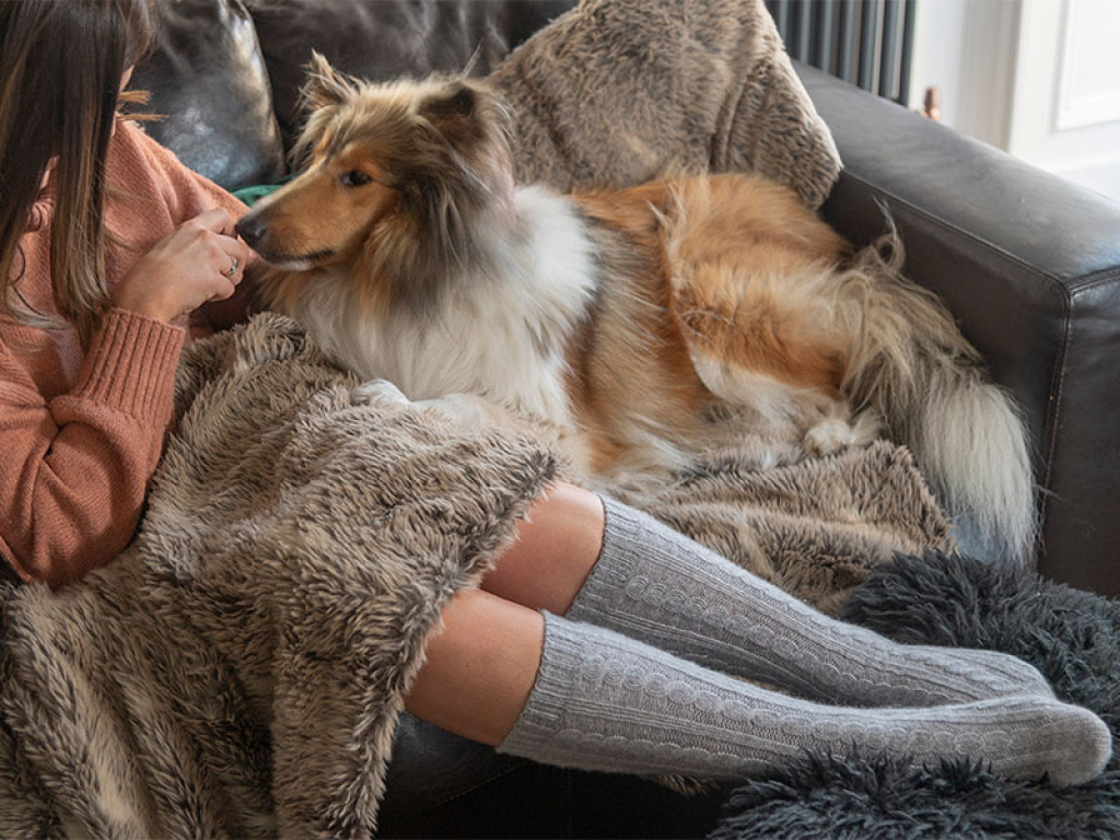 Cosy With Dog