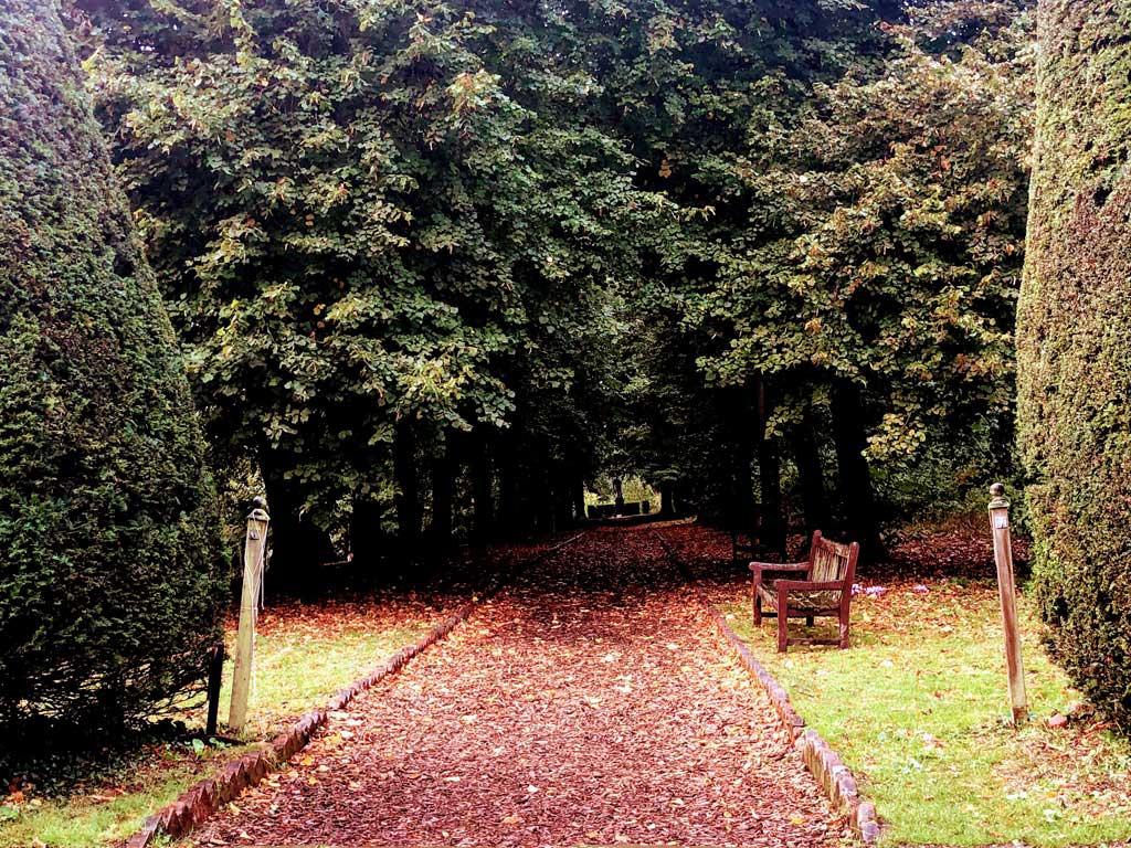 crisp leaf carpet cosy pleasures hygge